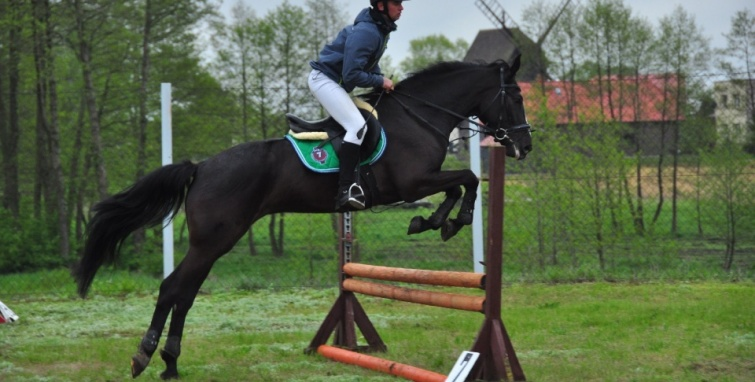 Zawody jeździeckie w Budzisławiu Kościelnym